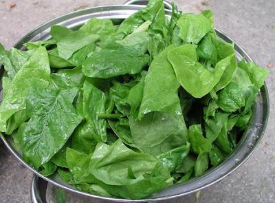 gambar bayam http://www.opoae.com/2013/03/sayuran-dan-buahan-untuk-mengembalikan.html