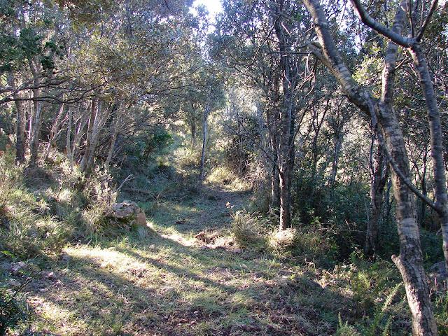 Senderismo - Cadenas del Faixó del Boveral - Roca Xapada