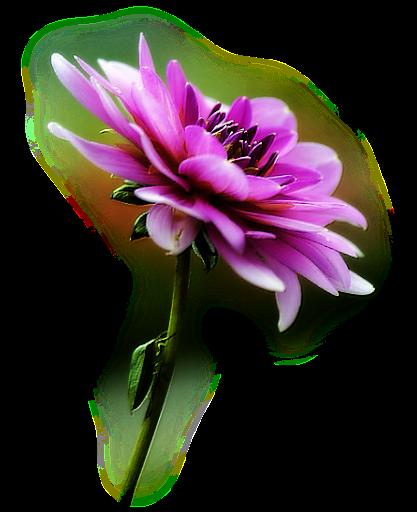blomster%2520diamonds%2520eventyrland%2520%252824%2529.png