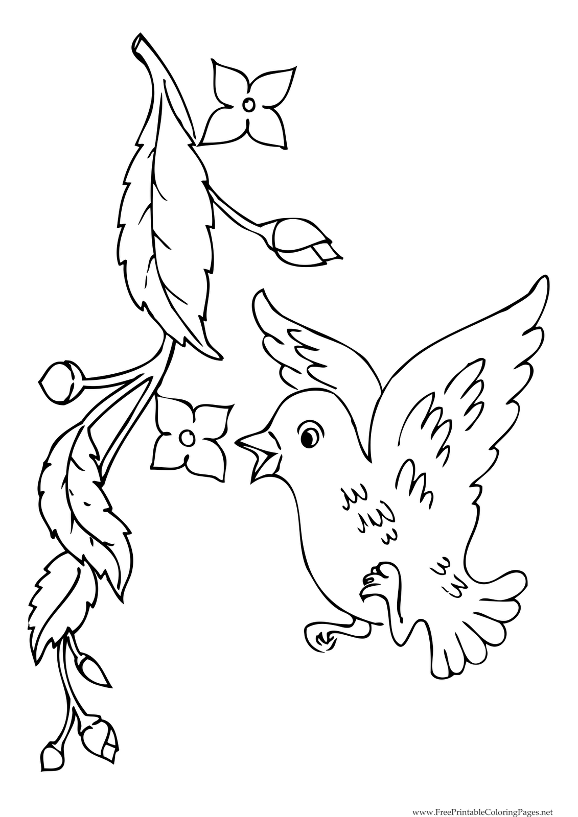 Coloring pages of flower buds - Spring Blossoms Coloring Pages Coloring Pages Of Parts Of A Bird