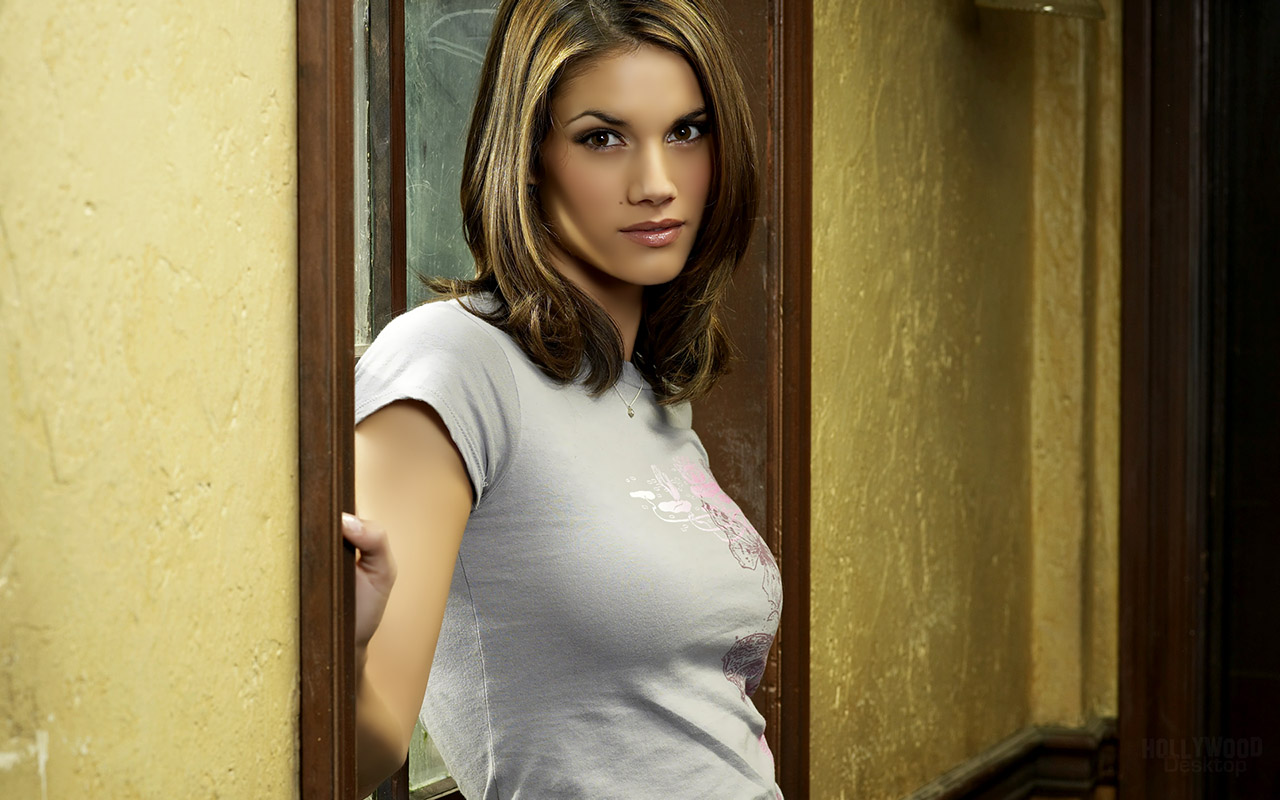Missy Peregrym Hot Actress Wallpapers Free Images Pictures
