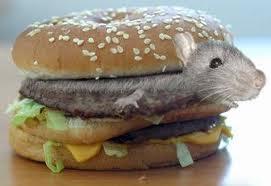 tikus dalam sandwich