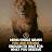 rahul katolkar avatar image