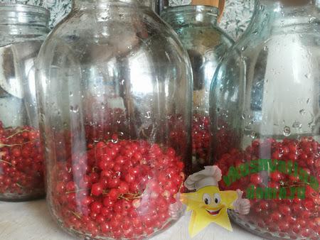 Консервируем компот из красной смородины