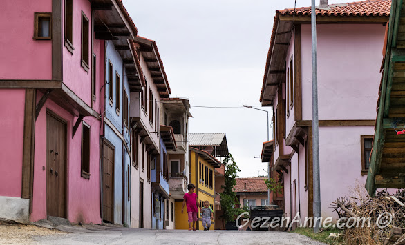 Bursa Misi (Gümüştepe) köyündeki restore edilmiş eski Osmanlı evleri