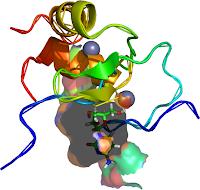 gata1 biological unit ara-C (Arabinofuranosylcytosine) Cytarabine (CID_6253; SDF File (.sdf)) = ara-c (MMDB ID: 23600 PDB ID: 1P5Z)