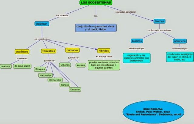 Un espacio para compartir mapa conceptual sobre ecosistemas for Cuales son los cajeros red