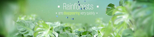 The Rainforests Titles After Effects Templates