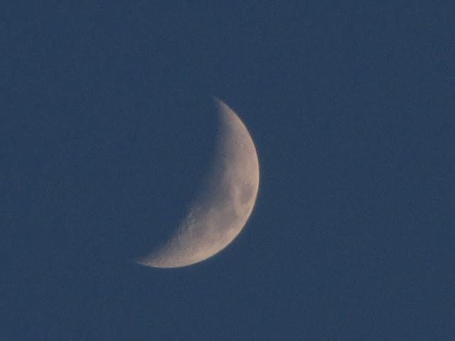 今晚拍的月亮