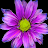 Mohammad reza Irn avatar image