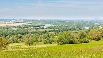 Blick auf den Rhein und den Grand Canal d'Alsace