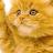 Valentino Mumford avatar image