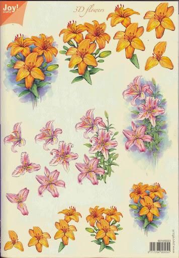 knipvel 6010-0023 joy bloemen.jpg