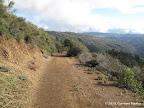 Along Knibbs Knob Trail