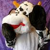 M koe paars.jpg