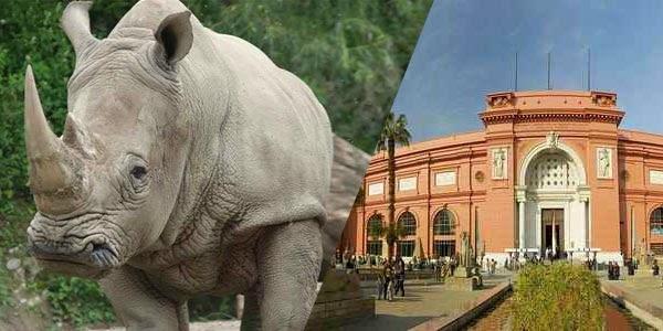 لغز حديقة الحيوان أم متحف الآثار