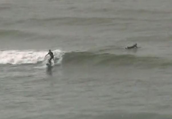 surf-baja-california-lafonda.jpg