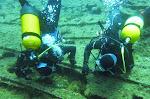 Claire et Nico cherchent le labre vert   (le poisson, photo 12)