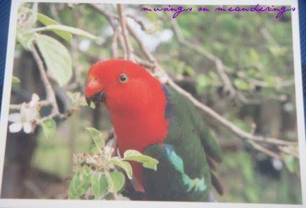 postcards, postcard perfect, Australia, postcard giveaway
