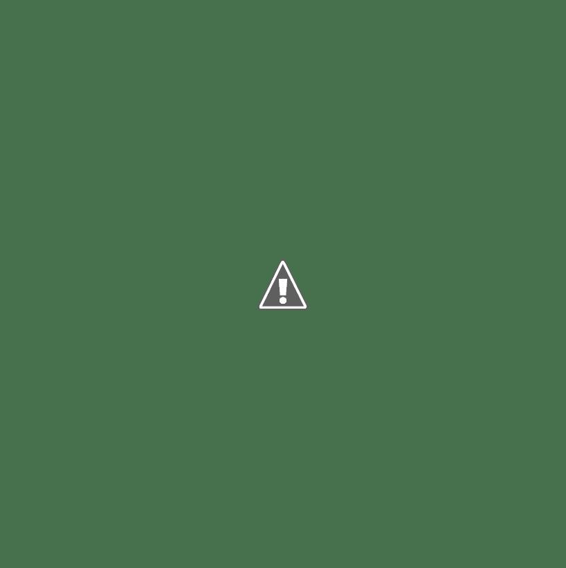 LEGO Block fun