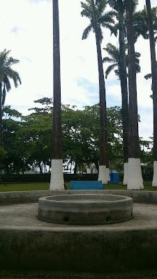 Casino Colmbus Platinum, Avenida 2, Limón, Costa Rica