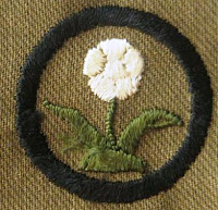Girl Scout Badge 1920: Naturalist. (Flower) - DaisyLow.com Website designed n Memory of Eileen Alma Klos (1929-1974)