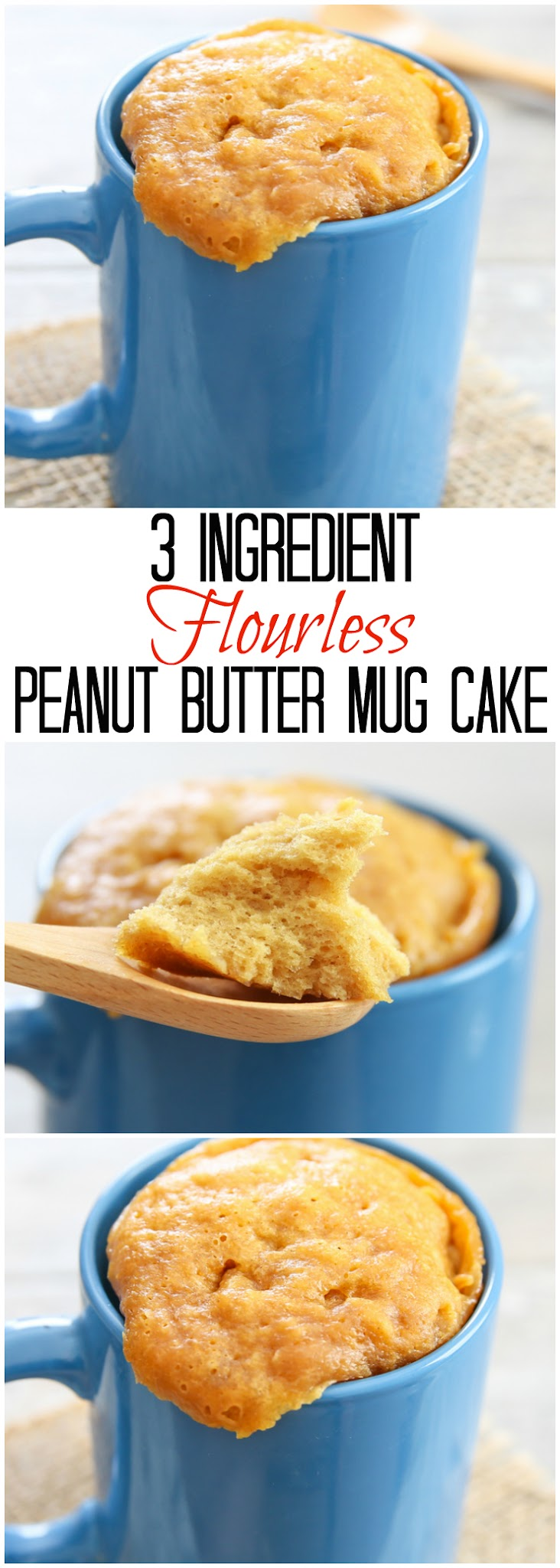 3 Ingredient Flourless Peanut Butter Mug Cake