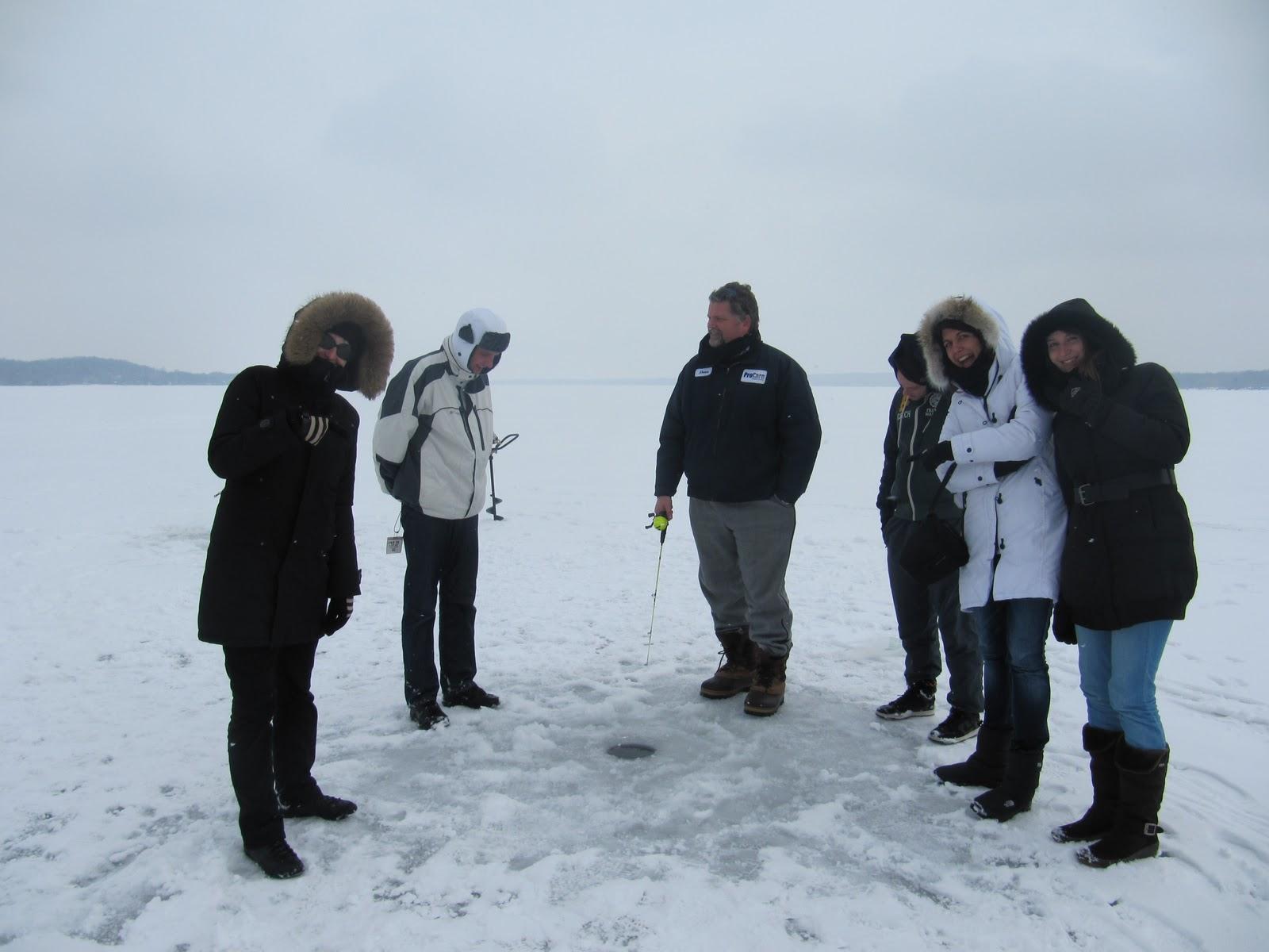 au pays des caribous  f u00e9vrier 2011