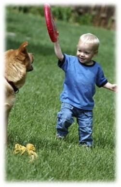 Desarrollo del ni os de 1 a 6 a os ni ez temprana 1 a 3 for Sillas para ninos de 3 a 6 anos