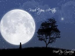 Mainkanlah Kata Kata Malam Bulan Bintang Dan Pohon