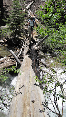 The option to fording the North Fork was this tree.,..notice the white water underneath...©http://backpackthesierra.com