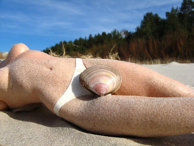 Jakks Pacific Paradise Doll IMG_8605