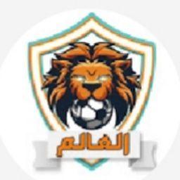 احمد مجيد