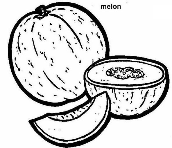 Melone, Malvorlagen