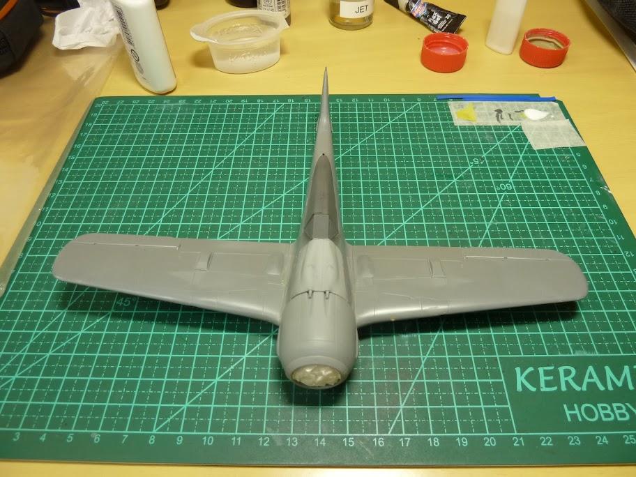 FINALIZADO 24/6 - Focke Wulf Fw 190 A-8 Tamiya 1:48 P1040764