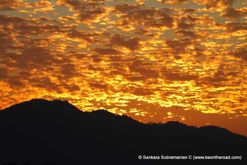 Vivid and Vibrant Evening Sky at Kaziranga - 5