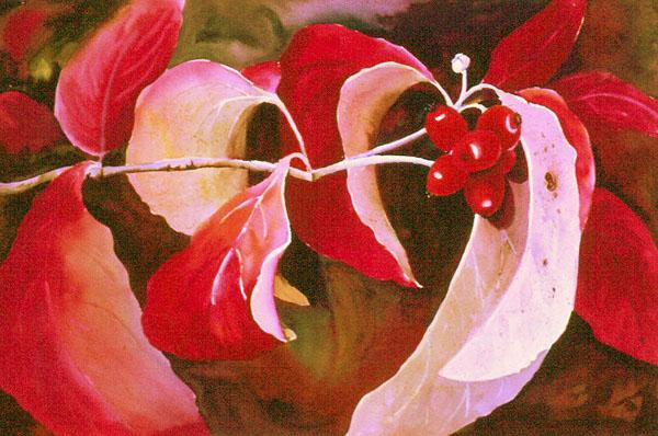 """Dogwood Berries"" by artist Natalie Fleming."
