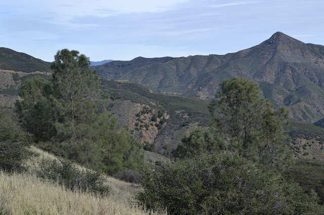Cachuma Peak