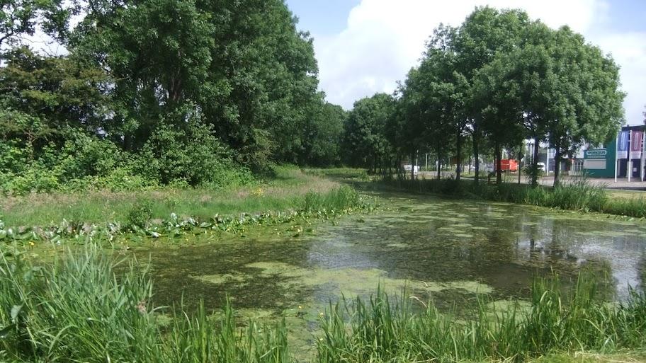 150km en ligne! Amsterdam-Leeuwarden: 22-23/6/2013 Amsterdam%2520leeuwarden%2520035