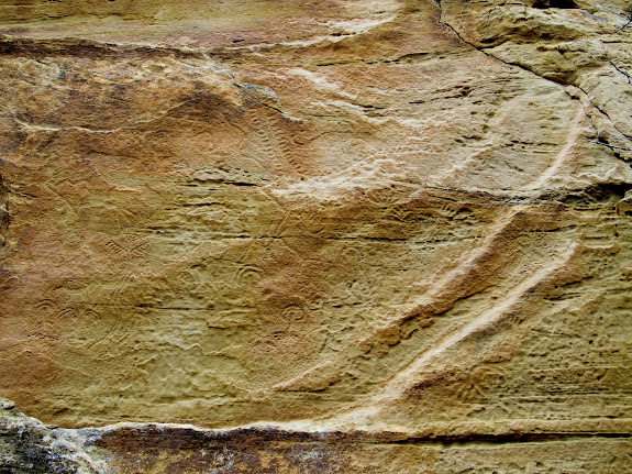 Petroglyphs covering the sandstone