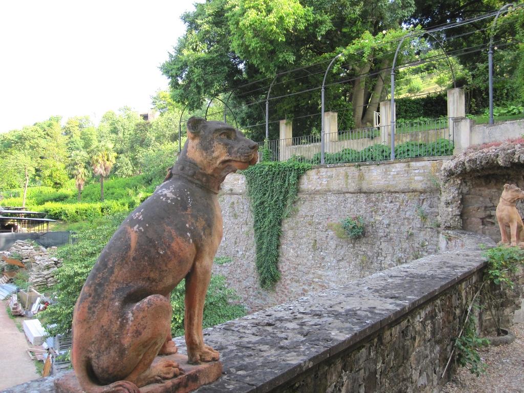 Flores y jardin patio los perros de piedra de los - Jardin para perros ...