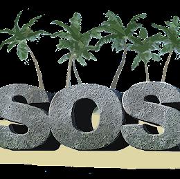 Spot On Solutions logo