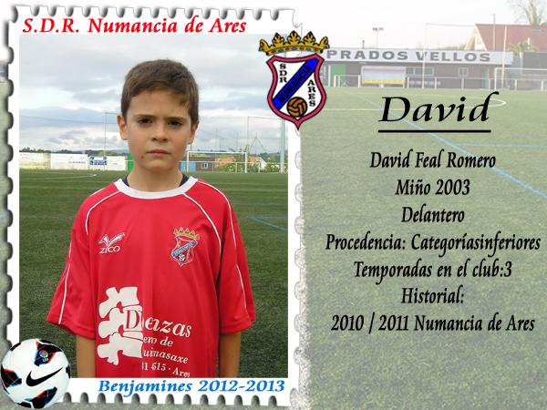 ADR Numancia de Ares. David.