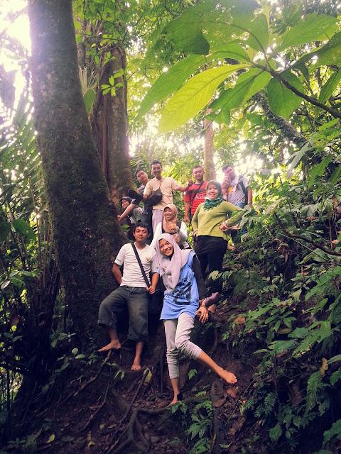 Hutan Lider