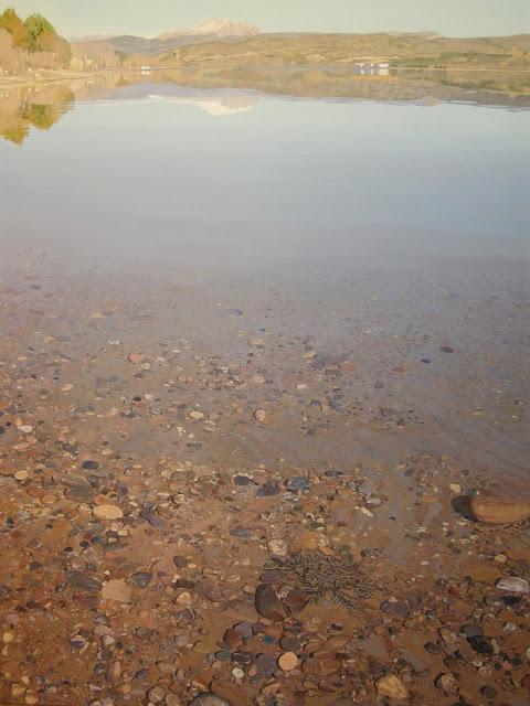 reflejos en el lago, pintura en acrilico del pintor Francisco Motto