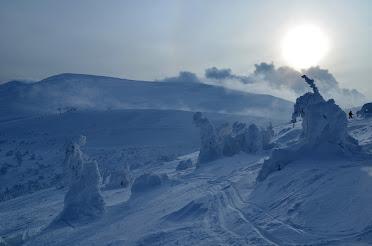Драгобрат гірські лижі