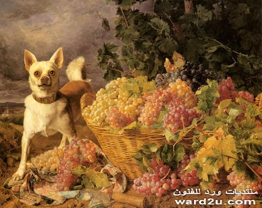 عناقيد العنب واجمل اللوحات