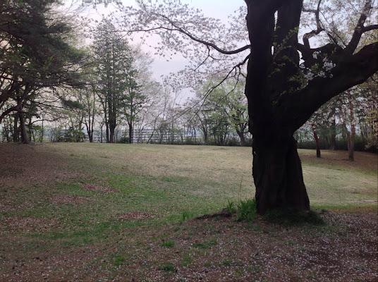 Kenei Sayamainariyama Park