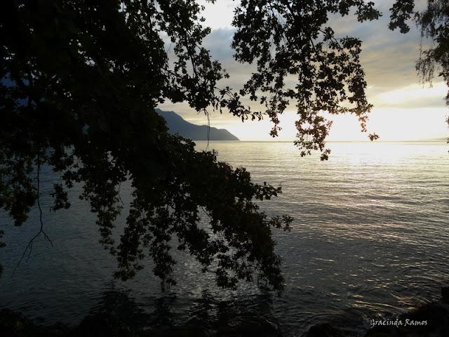 passeando - Passeando pela Suíça - 2012 - Página 9 DSC02385