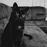 Avatar of Katarzyna Skała